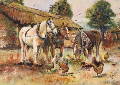 Chevaux à la ferme DURAND Maurice